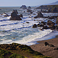 California Coast Sonoma by Garry Gay