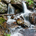 Calypso Cascades White Water by Brent Parks