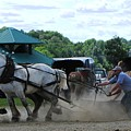 Canadain Horse Pull by Melissa Parks