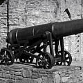 Cannon At Macroom Castle Ireland by Teresa Mucha