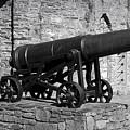 Cannon At Macroom Castle Ireland by Teresa Mucha