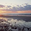 Cape Cod Sunset by Steve Somerville