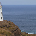 Cape Spear by Eunice Gibb