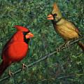 Cardinal Couple by James W Johnson