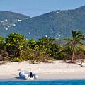 Caribbean Island by Louise Heusinkveld