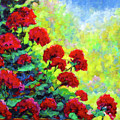 Cascade Of Geraniums by Richard T Pranke