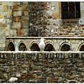 Castle Bird by Joan  Minchak