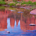 Cathedral Rock Reflection Pastel by Bob Coates