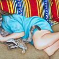 Catnap by Anne Rhodes