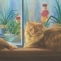 Cats In The Window by Diane Caudle
