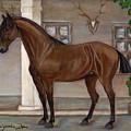 Cavalry Horse by Anna Folkartanna Maciejewska-Dyba