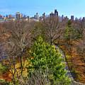 Central Park East Skyline by Randy Aveille