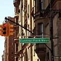 Central Park West by Madeline Ellis