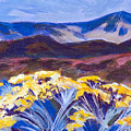 Chamisa And Mountains Of Santa Fe by Betty Pieper