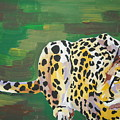 Cheetah by Caroline Davis