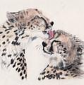Cheetah Love by Marqueta Graham