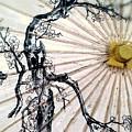 Cherry Blossom Parasol  by Stephanie Haertling
