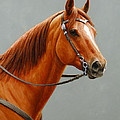 Chestnut Dun Horse Painting by Crista Forest
