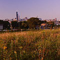 Chicago Skyline And Neighborhood Prairie by Sven Brogren