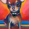 Chihuahua Dog Portrait by Svetlana Novikova