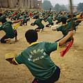 Children Practice Kung Fu In A Field by Justin Guariglia