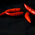 Chili Peppers by Jessica Wakefield