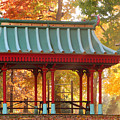 Chinese Pavillion In Tower Grove Park by Greg Matchick