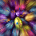 Chocolate Easter Eggs With Zoom Effect by Steve Ohlsen