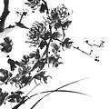Chrysanthemum2 by Chang  Lee