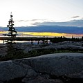 Churchill Tundra No. 1 Summer by Desmond Raymond