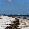 City Of Clearwater Skyline by Barbara Bowen