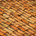 Clay Roof Tiles by David Buffington