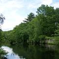 Clear River 1 by Erin Rosenblum