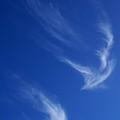 Clouds In Flight by Florene Welebny