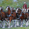 Clydesdale Hitch by Anda Kett