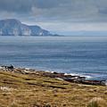 Coast Of Achill Island by Gabriela Insuratelu