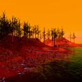 Coastal Burn Taj by Constance Peckman