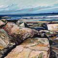Coast's Edge by Richard Knox