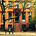Cobble Hill Brownstones - Brooklyn - New York City by Vivienne Gucwa