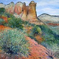 Coffee Pot Rock Sedona Arizona Usa 2001   by Enver Larney