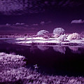 Cold Landscape by Galeria Trompiz