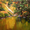 Cold Water Creek II by Connie Tom