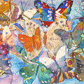 Collage Of Butterflies by Joyce Kanyuk
