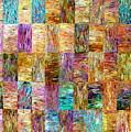 Color Fields by Dawn Hough Sebaugh