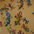 Color Lizards On The Wall by Rob Hans