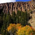 Colorado Fall 4 by Marty Koch