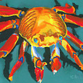 Colorful Crab II by Stephen Anderson