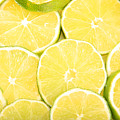Colorful Limes by James BO  Insogna