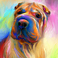Colorful Shar Pei Dog Portrait Painting  by Svetlana Novikova
