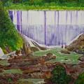 Comerio Dam by Tony Rodriguez